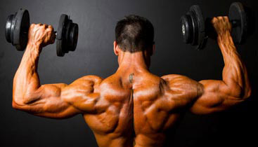 shoulder exercises for men