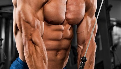 arm isolation is direct bicep and tricep work necessary