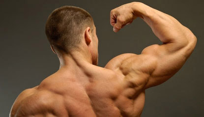 The Best Exercises To Build Big Shoulders