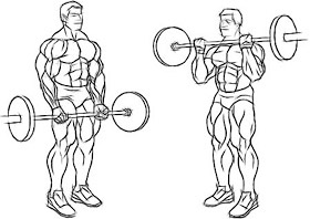 How To Build Biceps together with 3 also 33831 besides 6 Premium Artificial Christmas Pine Tree With Solid Metal Legs 1000 Tips Full Tree likewise How To Get In Shape At Home Without Equipment. on incline core