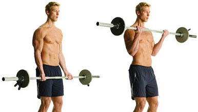 bicep peak exercise