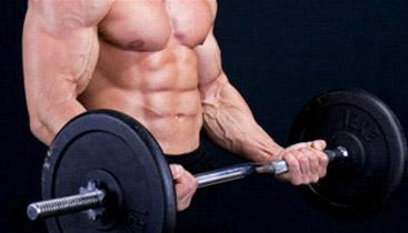 brachialis exercises