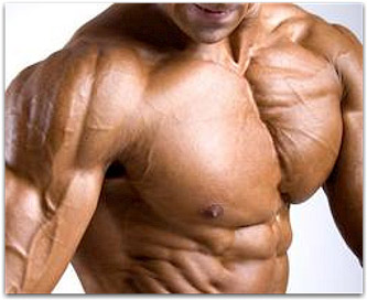 Your Complete Chest Workout For Mass