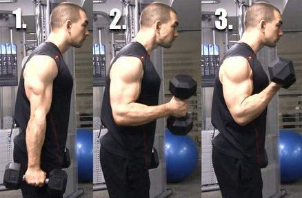 dumbbell curl form