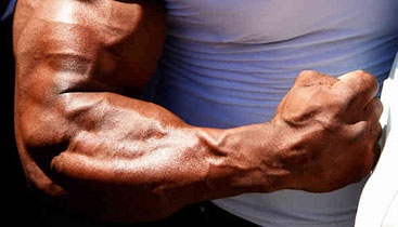 forearm workout for mass