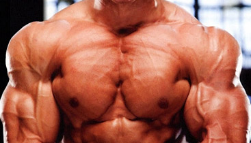 genetics and muscle growth