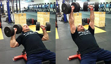 barbell press vs dumbbell press for chest which is better