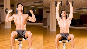 seated overhead dumbbell presses