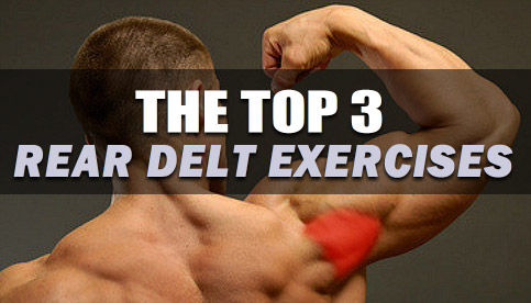 best rear deltoid exercises