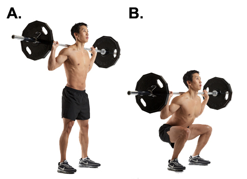 Barbell squat exercise to increase testosterone