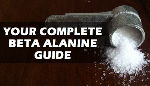 beta alanine review