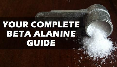 beta alanine review