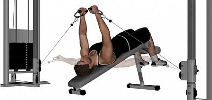 lower pec exercises