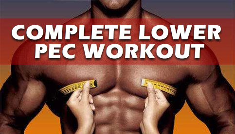 Complete Lower Pec Workout For A Bigger Chest