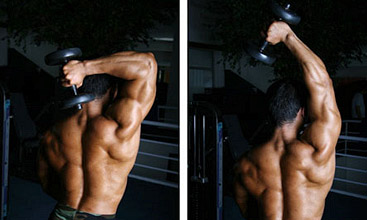 tricep long head workout