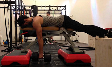 dumbbell seal row