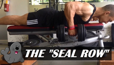 The Seal Row A Unique Exercise For A Bigger Back