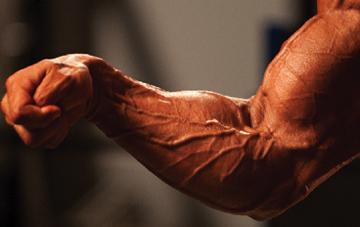 bigger forearms