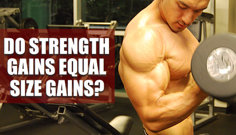 does strength equal size
