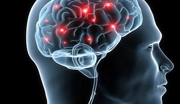 neural gains