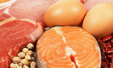 fat loss protein and fat sources