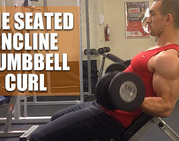 seated incline dumbbell curl