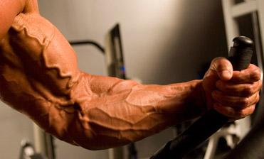 vascular arms
