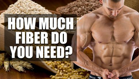 bodybuilding fiber intake
