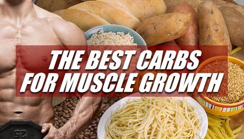 bodybuilding carbs