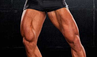 build big legs