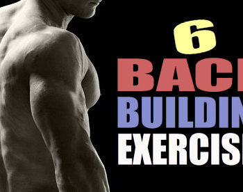 muscular back exercises