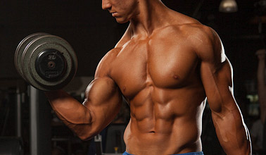 how much muscle can you gain
