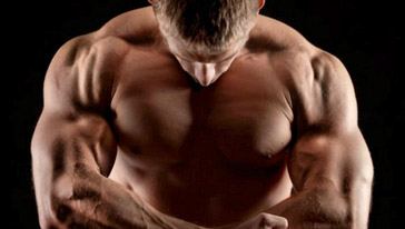 upright rows good or bad