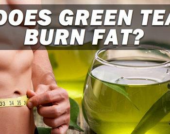does green tea burn fat