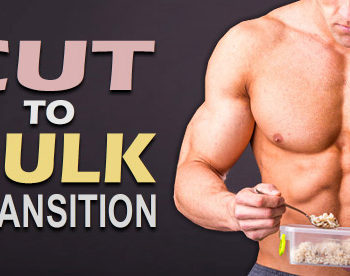 cutting to bulking