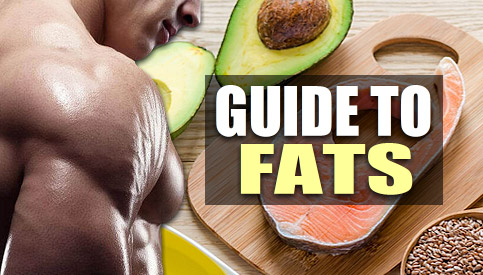 bodybuilding fat intake