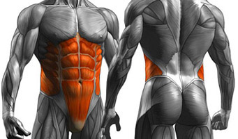 squats brace core
